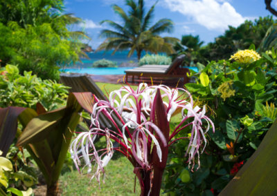 gardens at 473 grenada boutique resort