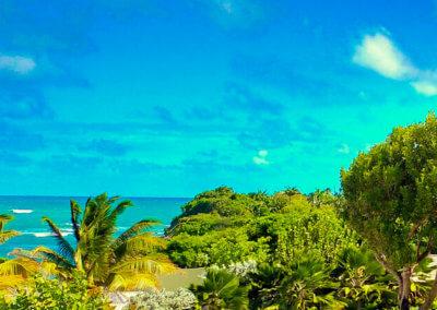 Deluxe villa view