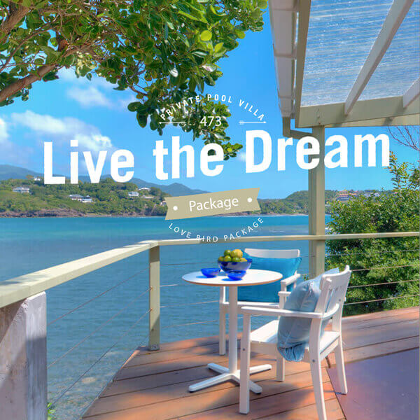 Live the dream package