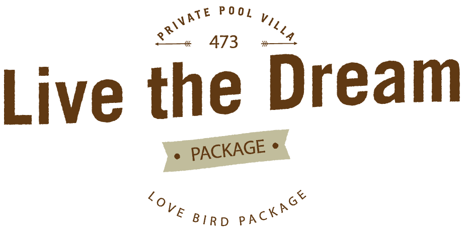 live-the-dream-package-473