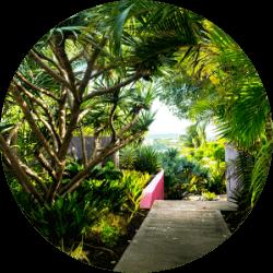 473 Grenada's gallery