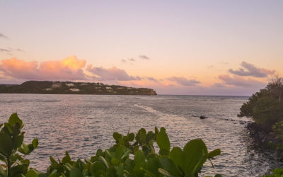 Summer all year long at 473 Grenada Boutique Resort